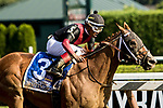 SARATOGA SPRINGS, NY - AUGUST 25: Whitmore  #3, ridden by jockey Ricardo Santana, Jr., wins the Forego Stakes on Travers Stakes Day at Saratoga Race Course on August 25, 2018 in Saratoga Springs, New York. (Photo by Sue Kawczynski/Eclipse Sportswire/Getty Images)