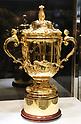 Rugby player Dan Carter displays the Webb Ellis Cup
