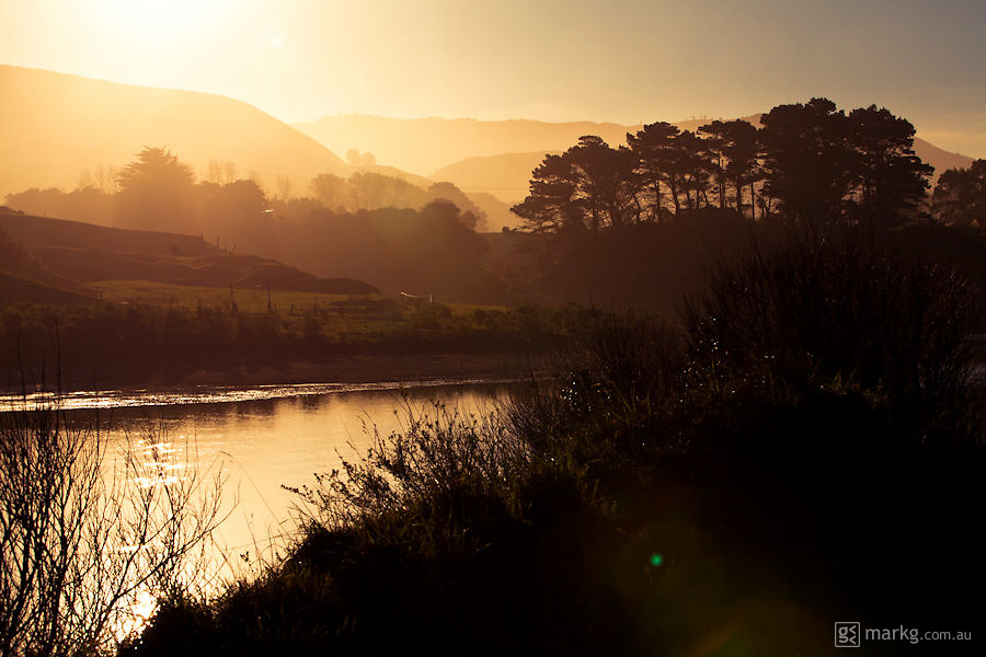 The late afternoon golden hour in the Wairarapa, the light was pretty amazing that day...