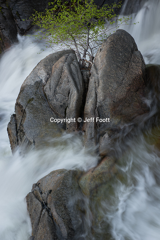 Rock in Cascade Creek in Yosemite National Park during spring run off.