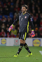 Vladimir Stojkovic of Serbia in action during the 2018 FIFA World Cup Qualifier between Wales and Serbia at the Cardiff City Stadium, Wales, UK. Saturday 12 November 2016