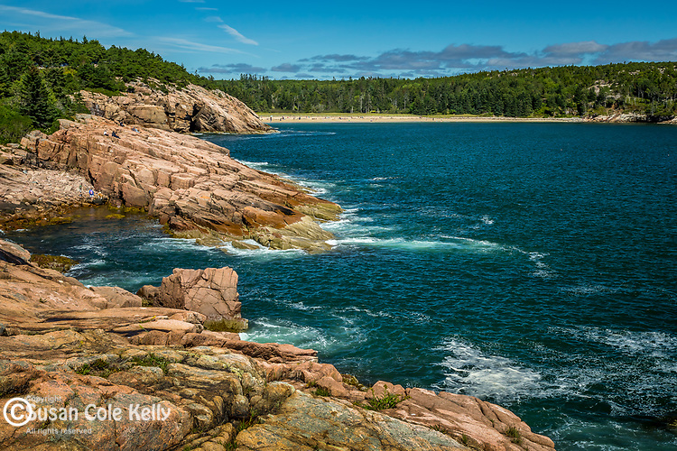 Newport Cove in Acadia National Park, Maine, USA
