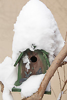 Cute bird house in branch of tree, mounded with winter snow, with reindeer and tree decorations on green and brown rustic house