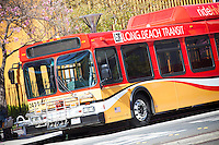 Long Beach California Bus Transit System