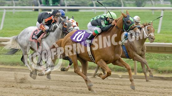Carolus Magnus winning at Delaware Park on 6/27/11