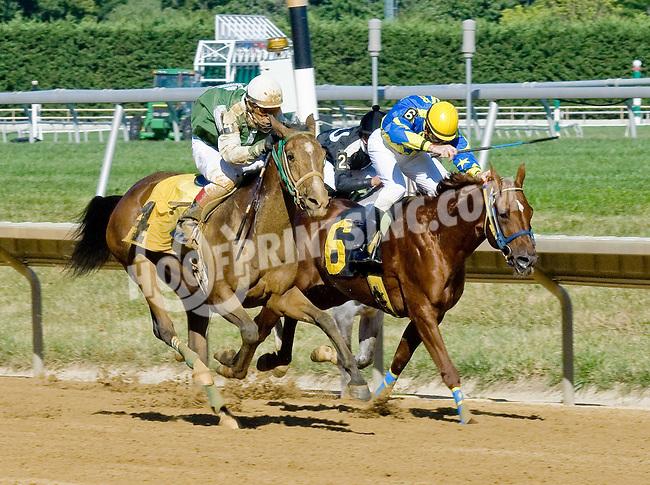 Explosive Heat MHF winning at Delaware Park on 7/25/12