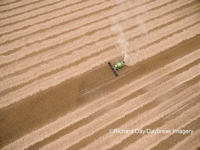 63801-09619 Soybean Harvest, John Deere combine harvesting soybeans - aerial - Marion Co. IL