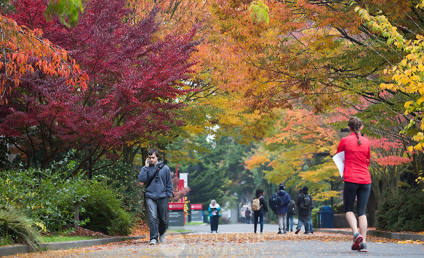 10242013- Students walk along the upper mall of campus as Fall hits Seattle U.