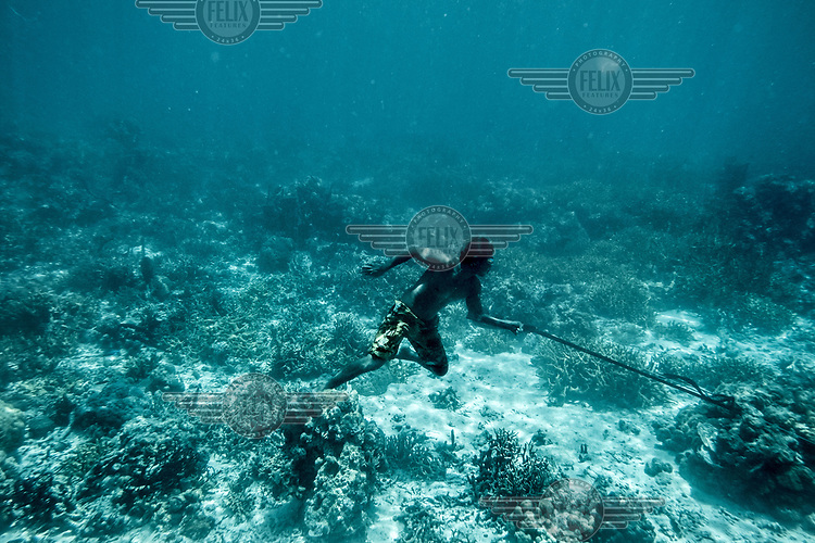Marjono Lessing chases after a fish he has just speared on the sea bed near the Kabalutan village in Indonesia's Togean islands. (Photo: Aurélie Marrier d'Unienville)