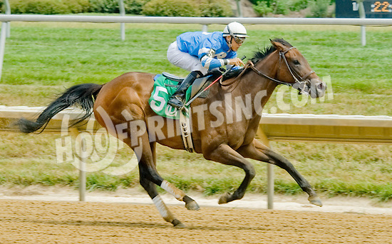 Sweet Valor winning at Delaware Park on 7/11/12