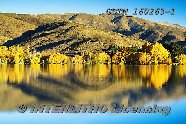 Tom Mackie, LANDSCAPES, LANDSCHAFTEN, PAISAJES, photos,+New Zealand, Tom Mackie, Wairepo Arm, Worldwide, atmosphere, atmospheric, autumn, autumnal, beautiful, fall, holiday destinat+ion, horizontally, horizontals, lake, mirror image, mountain, mountainous, mountains, peaceful, reflect, reflected, reflectin+g, reflection, reflections, restoftheworldgallery, scenery, scenic, season, tourism, tourist attraction, tranquil, tranquilit+y, travel, tree, trees, vacation, water, water's edge,New Zealand, Tom Mackie, Wairepo Arm, Worldwide, atmosphere, atmospheri+,GBTM160263-1,#l#