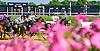 Unbridled Lion winning at Delaware Park on 6/30/16