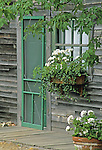 Old, unpainted building with green doors and potted geraniums, Georgetown, Maine, USA.