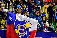TUNJA  - COLOMBIA - 30 - 05 - 2017: Hinchas de Everton, animan a su equipo durante partido de vuelta entre Patriotas F. C. de Colombia y Everton of Chile, de la primera fase, llave 5 por la Copa Conmebol Sudamericana en el estadio La Independencia de la ciudad de Tunja. / Fans of Everton, cheer for their team during a match of the second leg of the first phase key 5 of between Patriotas F. C. of Colombia and Everton of Chile, for the Conmebol Sudamericana Cup 2017 at the La Libertad stadium in the city of Tunja. Photo: VizzorImage / Javier Morales / Cont.