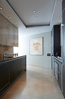 The contemporary kitchen is finished in soft grey. The painting is by Heinz Rabbow.