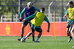 09.01.2020, Sportzentrum RCD Mallorca, Son Bibiloni, ESP, TL Werder Bremen -  Training Tag 07<br /> <br /> im Bild / picture shows <br /> <br /> Claudio Pizarro (Werder Bremen #14)<br /> <br /> Foto © nordphoto / Kokenge