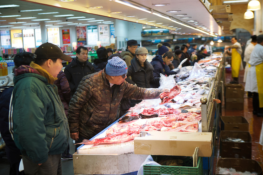 BROOKLYN, NY - JANUARY 15, 2016:  The fishmonger counter at Fei Long Market, which combines a shopping center, food court and a large supermarket under one roof. <br /> LOCATION: 6301 8th Avenue between 63rd and 64th Streets.<br /> CREDIT: Clay Williams for the New York Times.<br /> <br /> &copy; Clay Williams / claywilliamsphoto.com