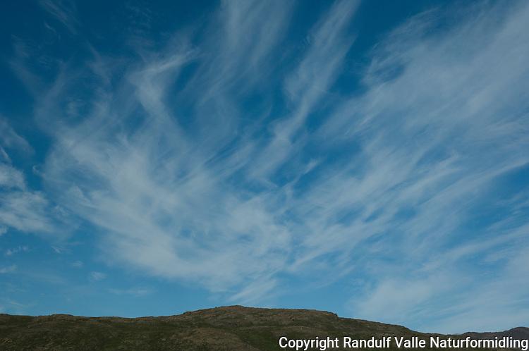 Blå sommerhimmel ---- Good summer weather