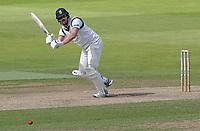 Matthew Lamb hits four runs for Warwickshire during Warwickshire CCC vs Essex CCC, Specsavers County Championship Division 1 Cricket at Edgbaston Stadium on 11th September 2019