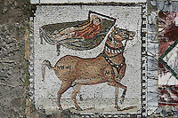 Detail of a mosaic of a horse and a man lying in a bed in the Villa of the Aviary, detail of Mosaics Carthage, Tunisia, pictured on January 30, 2008, in the morning. Carthage was founded in 814 BC by the Phoenicians who fought three Punic Wars against the Romans over this immensely important Mediterranean harbour. The Romans finally conquered the city in 146 BC. Subsequently it was conquered by the Vandals and the Byzantine Empire. Today the site is a UNESCO World Heritage. The Roman Villa of the Aviary, with its octagonal garden set in a peristyle courtyard, is known for its fine mosaics depicting birds. Picture by Manuel Cohen.