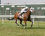 Parx Racing Win Photos_06-2014