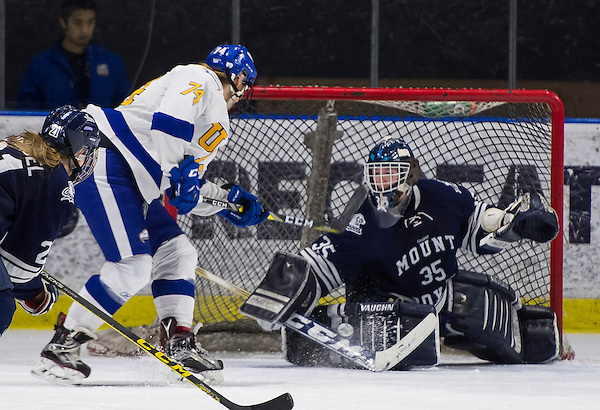 VANCOUVER,BC:FEBRUARY 11, 2017 -- UBC Thunderbirds Mt. Royal University Cougars during U Sports Canada West action at UBC in Vancouver, BC, February, 11, 2017. (Rich Lam/UBC Athletics Photo) <br /> <br /> ***MANDATORY CREDIT***