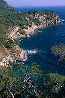 Europe/Provence-Alpes-Côte d'Azur/83/Var/Ile d'Hyères/Ile de Porquerolles: Grand Cale Ouest et côte rocheuse