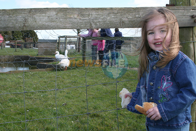 Lauren Vivash feeding the ducks at Newgrange Farm...Photo NEWSFILE/Jenny Matthews.(Photo credit should read Jenny Matthews/NEWSFILE)....This Picture has been sent you under the condtions enclosed by:.Newsfile Ltd..The Studio,.Millmount Abbey,.Drogheda,.Co Meath..Ireland..Tel: +353(0)41-9871240.Fax: +353(0)41-9871260.GSM: +353(0)86-2500958.email: pictures@newsfile.ie.www.newsfile.ie.FTP: 193.120.102.198.