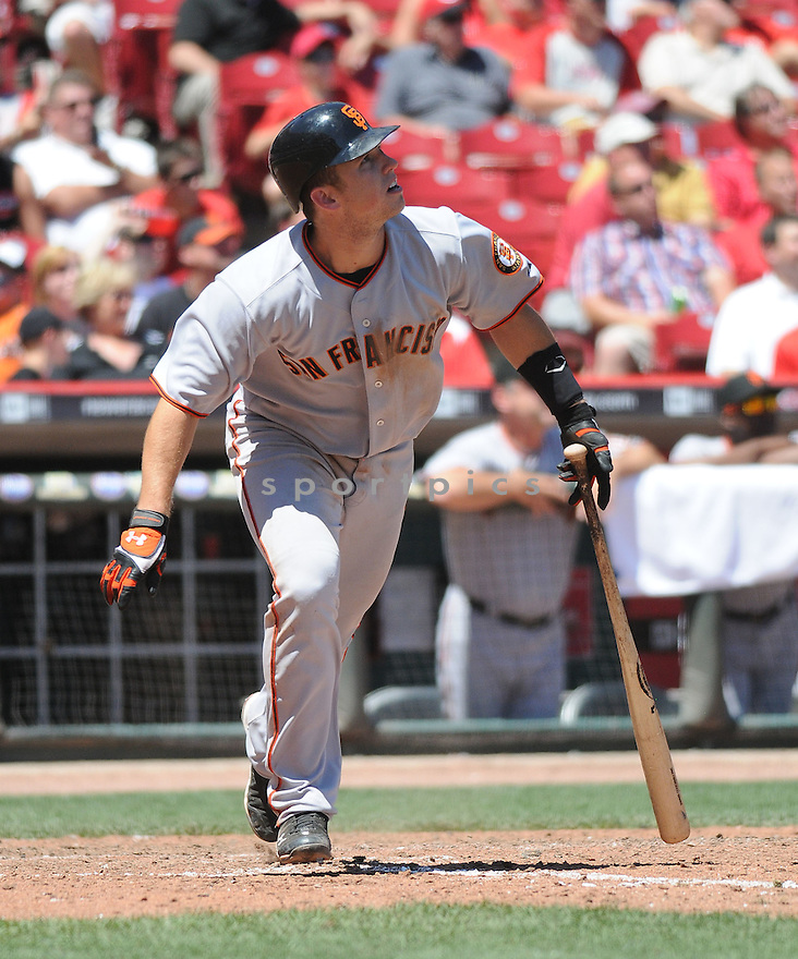 BUSTER POSEY,  of the San Francisco Giants,  in action during the Giants  game against the Cincinnati Reds.  The Reds beats the Giants 7-6 in Cincinnati, Ohio on June 10, 2010...CHRIS BERNACCHI/ SPORTPICS