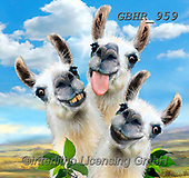 Howard, REALISTIC ANIMALS, REALISTISCHE TIERE, ANIMALES REALISTICOS, paintings+++++,GBHR959,#a#, EVERYDAY ,Selfie,Selfies