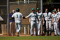 Dartmouth Big Green Michael Calamari (3) is greeted by teammates Trystan Sarcone (14), Nathan Skinner (15), and Kolton Freeman (28) after scoring a run during a game against the Omaha Mavericks on February 23, 2020 at North Charlotte Regional Park in Port Charlotte, Florida.  Dartmouth defeated Omaha 8-1.  (Mike Janes/Four Seam Images)