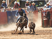 COCHISE COLLEGE RODEO 2019