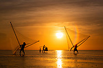 Fishermen use huge nets to catch fish as the sun rises behind them.  The fishermen have developed a special technique which allows them to catch shrimp and other sea creatures in shallow water.<br /> <br /> Photographs capture them standing above the water on bamboo heels as they hold their net which is attached to two longer bamboo sticks.  Amateur photographer Thong Nguyen took these shots at Quang Lang beach in Thai Binh province, Vietnam.  SEE OUR COPY FOR DETAILS.<br /> <br /> Please byline: Thong Nguyen/Solent News<br /> <br /> © Thong Nguyen/Solent News & Photo Agency<br /> UK +44 (0) 2380 458800
