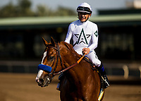 ARCADIA, CA - APRIL 07: Justify #6 with Mike Smith win the Santa Anita Derby at Santa Anita Park on April 07, 2018 in Arcadia, California.(Photo by Alex Evers/Eclipse Sportswire/Getty Images)