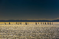 California-Santa Barbara-Sailboats