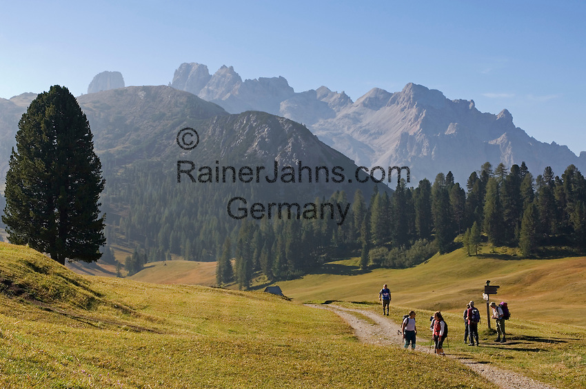 Italy, South Tyrol, Alto Adige, hikers at Dolomites Trekking Trail Nr. 3, Prato Piazza-Rifugio Vallandro