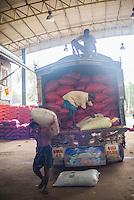 Men working at Dambulla wholesale vegetable market, Dambulla, Central Province, Sri Lanka, Asia. This is a photo of men working at Dambulla wholesale vegetable market, Dambulla, Central Province, Sri Lanka, Asia.