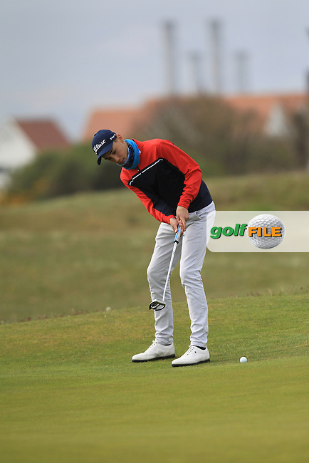 Fraser Davren (SCO) on the 13th green during Round 2 of the Flogas Irish Amateur Open Championship at Royal Dublin on Friday 6th May 2016.<br /> Picture:  Thos Caffrey / www.golffile.ie