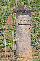 A stone gate pillar carved with Ausone in the vineyard of Chateau Ausone  Saint Emilion  Bordeaux Gironde Aquitaine France