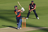 Cricket 2012-07