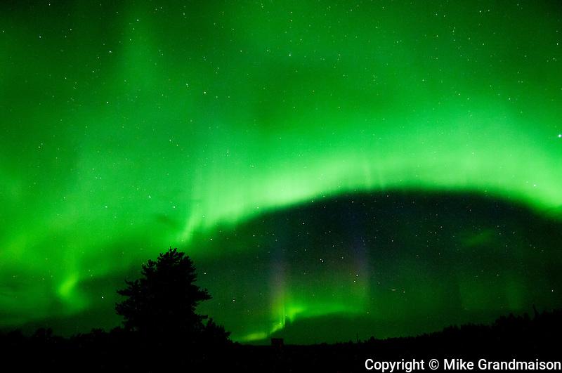 Northern lights (Aurora borealis)<br /> Devil's Lake<br /> Manitoba<br /> Canada