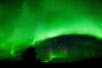 Northern lights (Aurora borealis)<br /> Devil's Lake<br /> Manitoba<br /> Canada