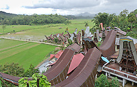 village and paddy fields in Toraja land, Sulawesi, Indonesia.The traditional houses are called Tongkonan.
