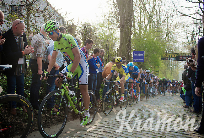 Peter Sagan (SVK/Cannondale) up the Taaienberg<br /> <br /> 57th E3 Harelbeke 2014