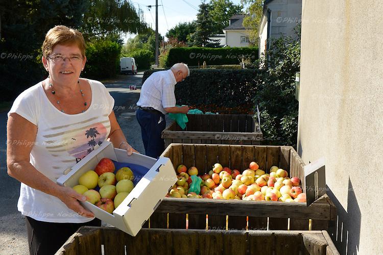 Aux Vergers de Séné, à Saint-Sylvain d'Anjou (49), les clients peuvent soit acheter les pommes sur place en vente directe, soit les cueillir eux-même dans les vergers pour les acheter encore moins cher.