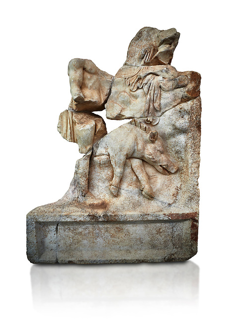 Roman Sebasteion relief  sculpture of  Meleager and a boar Aphrodisias Museum, Aphrodisias, Turkey.     Against a white background.<br /> <br /> Meleager stands naked in front of a rocky outcrop. In the foreground lies a dead Calydonian boar, Above, a local nymph emerges from behind a fold in the landscape. The boar hunt took place on the imposing Mt Zygos at Calydon.