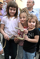 "A girl holds a snake during an annual procession dedicated to Saint Domenico, in the streets of Cocullo, in the Abruzzo region, on May 1, 2012.....The St. Domenico's procession in Cocullo, central Italy. Every year on the first  of May, snakes are placed onto the statue of St. Domenico and then the statue is carried in a procession through the town. St. Domenico is believed to be the patron saint for people who have been bitten by snakes:..Italy, Cocullo, in the Province of L'A...quila, is at 870 meters a.s.l., along the railway line connecting Sulmona to Rome. The village rises alongside Mount Luparo (1327 meters) ""The valley opening in front of the village is surrounded by bare rocks, while on the other side, to the south, snow-capped mountain crests follow one after the other..."".San Domenico Abate lived in the 10th and 11th centuries AD. Born in Foligno, in the Umbria region, he started his pilgrimages, preaching and ascetic practices in Central Italy, making miracles recorded by the word-of-mouth tradition. He died on 22 January 1031 and was buried in Sora...Cocullo snake charmers are over with their snake hunting. They proceeded through the During the procession on the first in May, before the snakes are placed all over the statue of St. Dominick, they will be fed with milk kept in containers with crusca. It is the snake that, most of all other elements, expresses an ancestral myth: the unknown aspect and unpredictability of the natural environment with man's innate need to achieve the dominance on his own habitat. ..Snakes and wolves were the emblems of Italic peoples like the Marsians and Irpinians. Some areas in Abruzzo, especially in the Sagittario valley, were under the menace of wolves and snakes, which for the local populations represented the uncertainty and anxiety of their existence that, together with the precariousness and hardships of life, were almost unbearable. Therefore the community adopted such magical-religious rites (namely the snakes enve"
