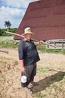 Cuba, Pinar del Rio Region, Viñales (Vinales) Area.  Field Laborer, Montecinos Tobacco Farm.