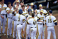 Michigan Wolverines Cody Bruder (3) and Matt Ramsay (46) high five teammates during the first game of a doubleheader against the Canisius College Golden Griffins on June 20, 2016 at Tradition Field in St. Lucie, Florida.  Michigan defeated Canisius 6-2.  (Mike Janes/Four Seam Images)