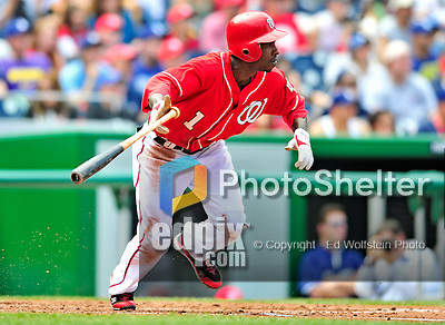 25 April 2010: Washington Nationals' outfielder Nyjer Morgan in action against the Los Angeles Dodgers at Nationals Park in Washington, DC. The Nationals shut out the Dodgers 1-0 to take the rubber match of their 3-game series. Mandatory Credit: Ed Wolfstein Photo